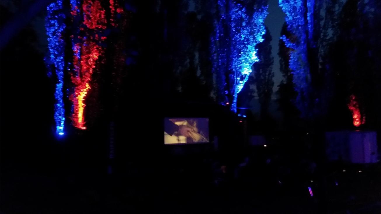 cinema2015-02